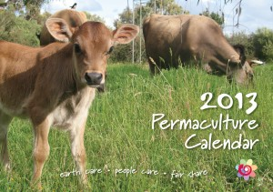 2013_Pc_Calendar_Cover_HR