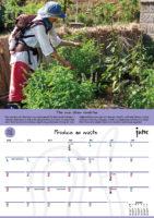 June - Produce no waste