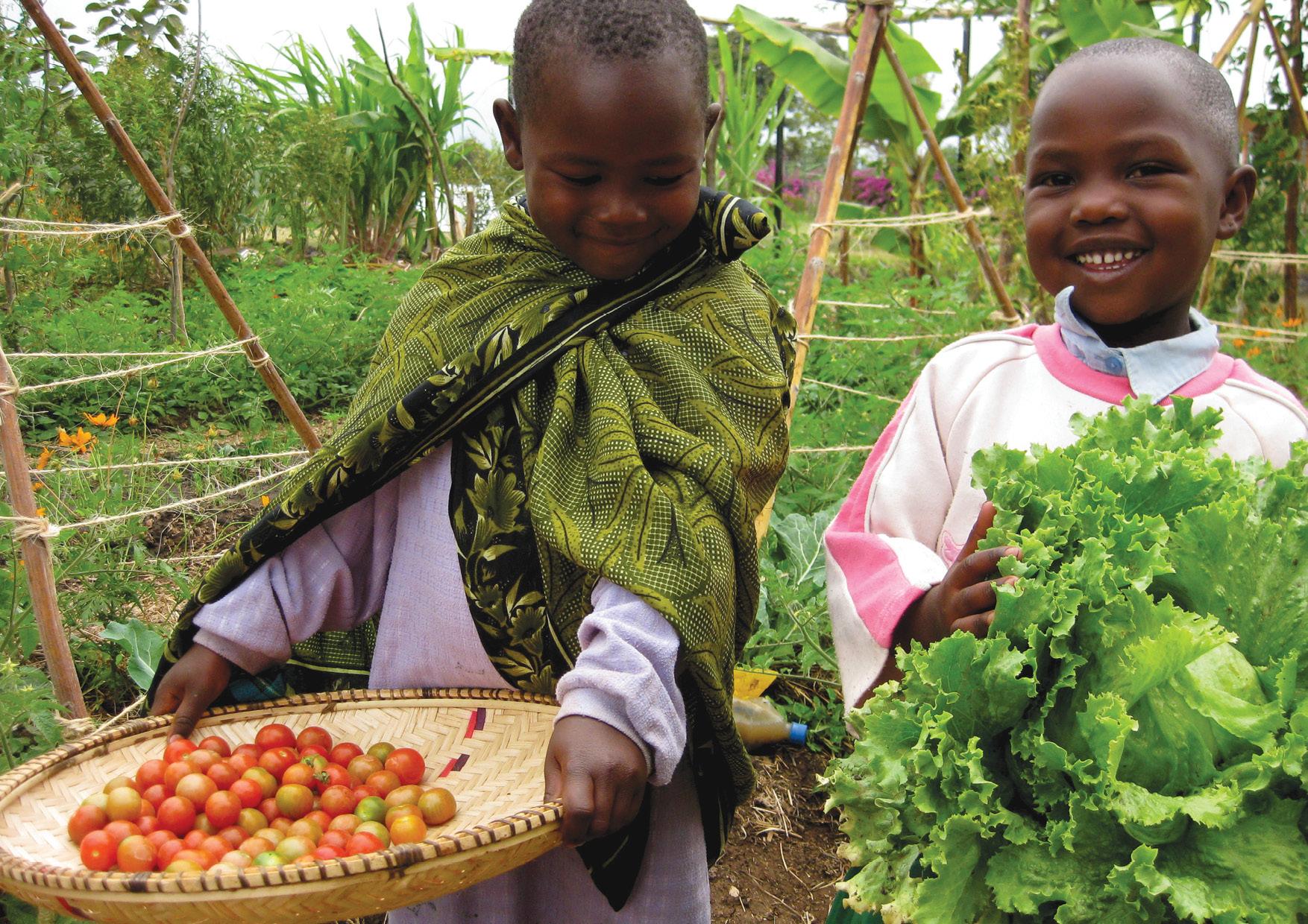 Principle 6: Produce no waste - Growing food for life