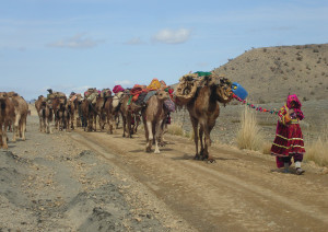 Principle 11: Use edges & value the marginal - Nomadic living in a harsh environment (Pakistan)