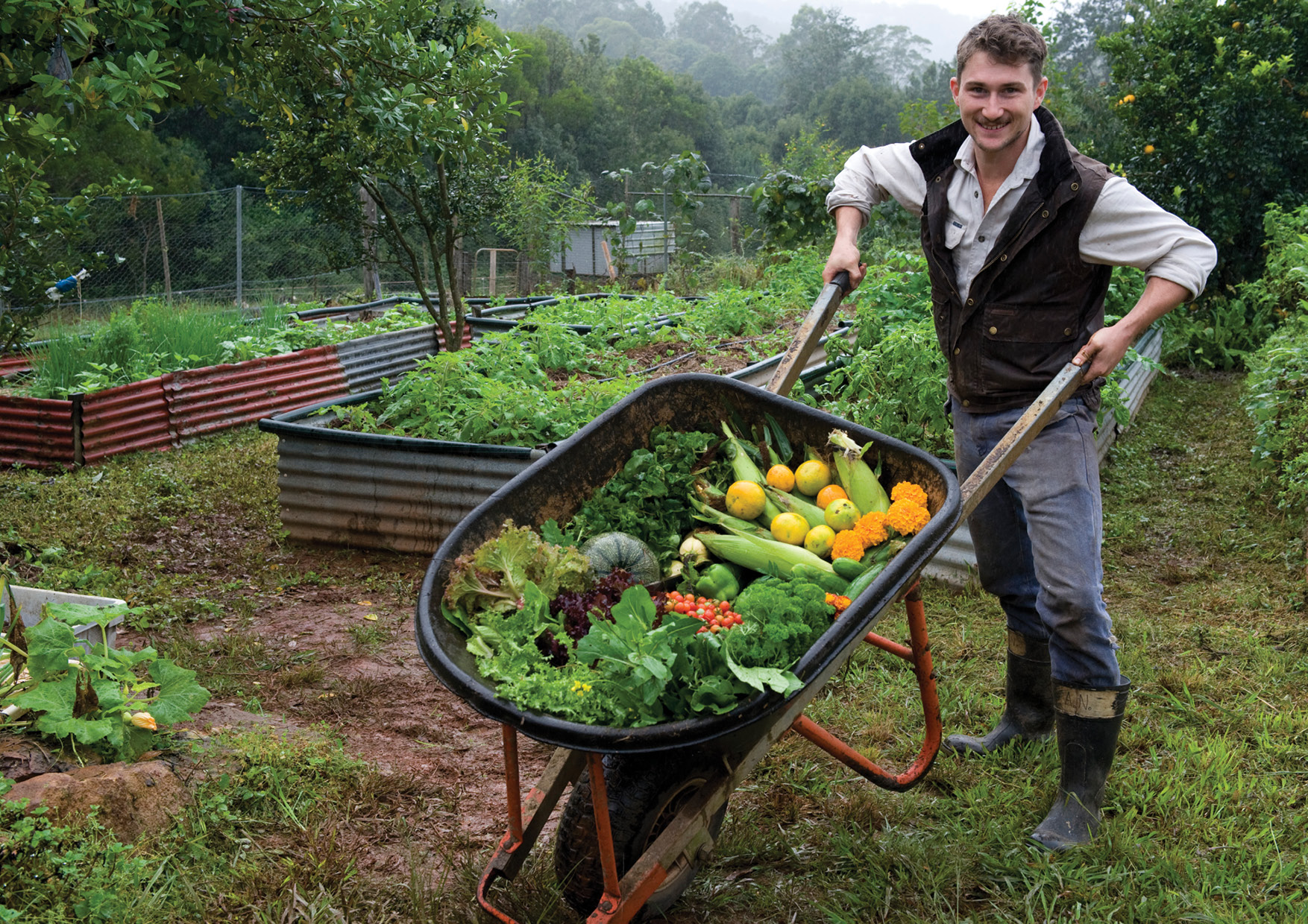 Principle 3: Obtain a yield - A barrow full of goodies (NSW, Australia)