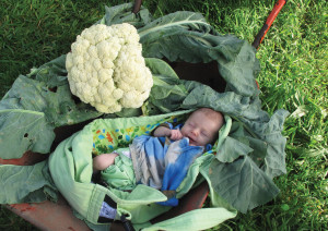 Principle 9: Use small and slow solutions - Growing a baby - and a garden