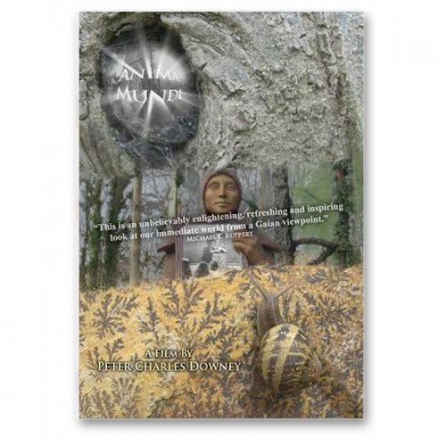 Anima Mundi DVD - 'the s