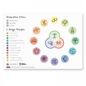 Permaculture Design Principles Poster