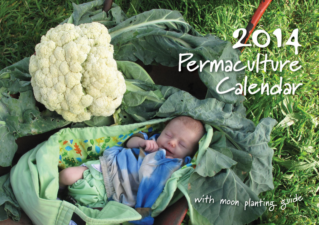 The 2014 Permaculture Calendar Includes daily icons and moon phase times to guide your planting.