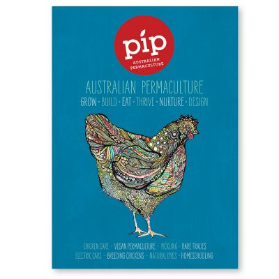 Pip Issue #7