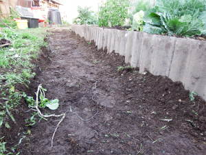 Surrounding soil from the path used to build the garden bed, creating a depression