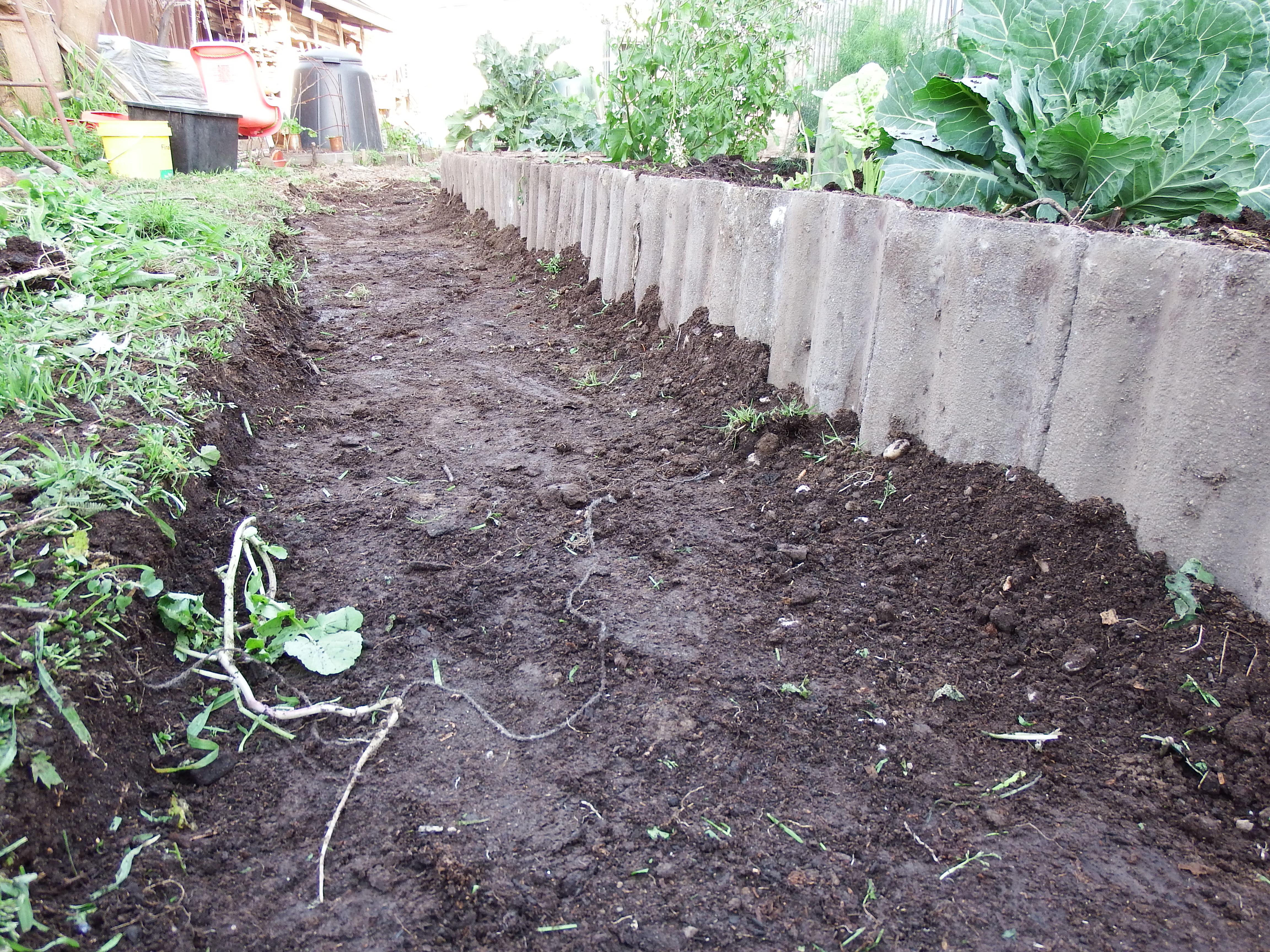 raising garden beds using concrete roof tiles