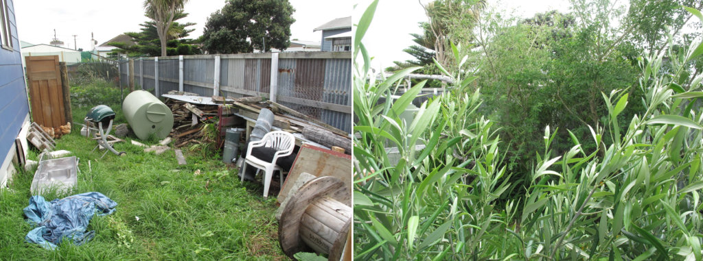 Before and after shots of the food forest as it develops