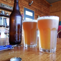 Why not make your own beer? It makes cents, and is a welcome relief after a stint in the garden.