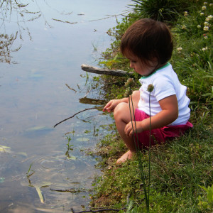 Observing and interacting with tadpoles