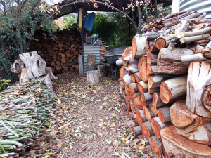 Read more about the article Cooking & heating cleanly with wood