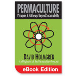 Permaculture: Principles & Pathways Beyond Sustainability eBook