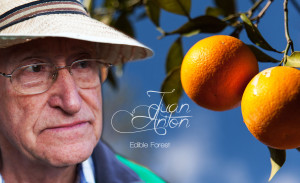 Read more about the article Juan Anton and his Edible Forest
