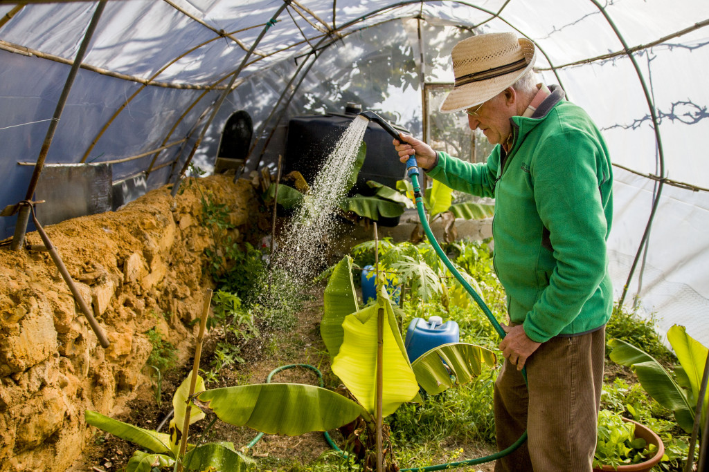 Juan Anton watering plants in his home made greenhouse