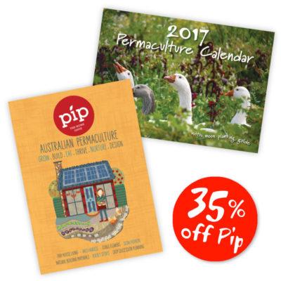 Pip and Calendar Bundle