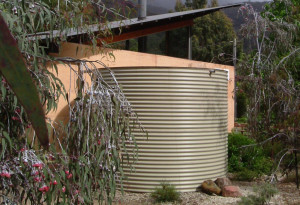 Read more about the article Making most of rainwater around the home