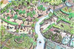 tropical-permaculture-illustration