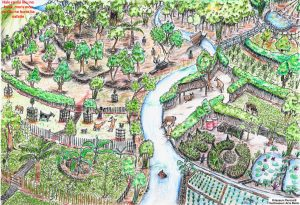 Read more about the article Open source Permaculture Guidebook for the tropics