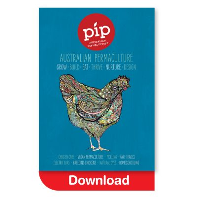 Pip Issue 7 - download