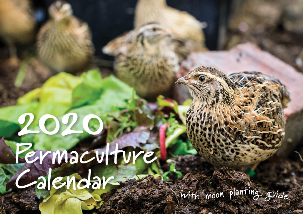 2020 Permaculture Calendar